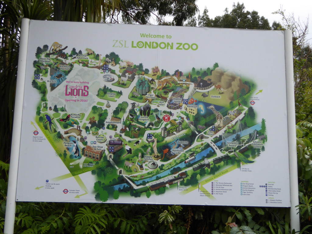 London ZooTravelAddictUK1
