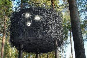 The-Birds-Nest