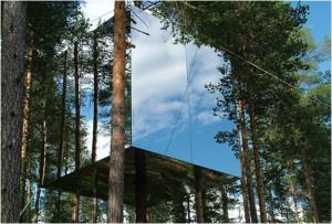img_tree_hotel_sweden