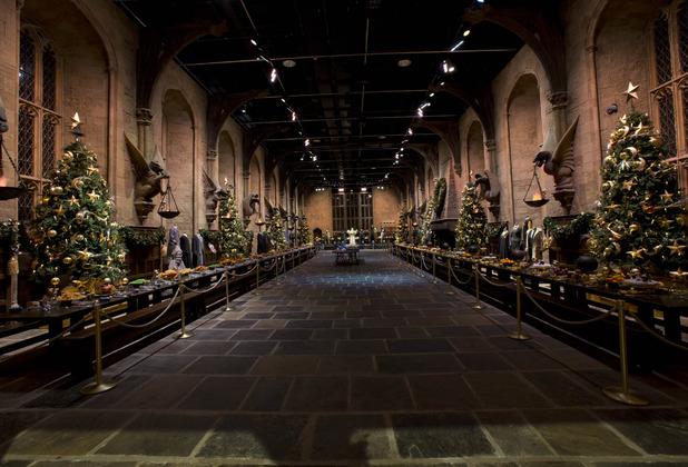 anderson-hogwarts-39