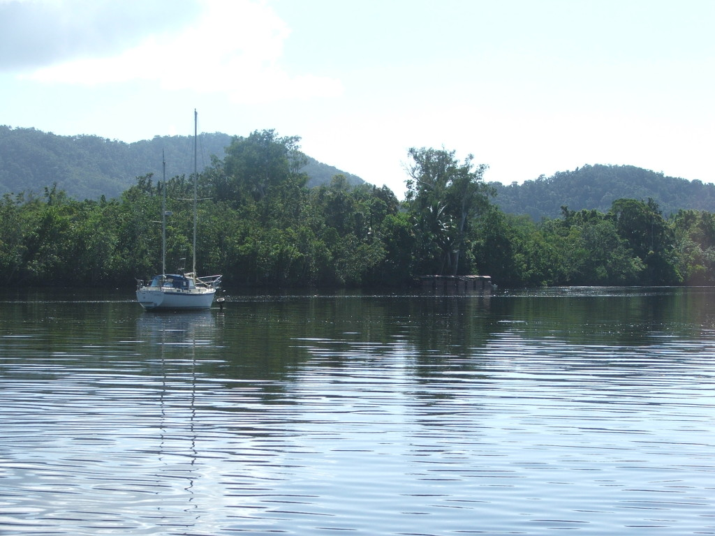 DAINTREE AND CAPE TRIBULATION